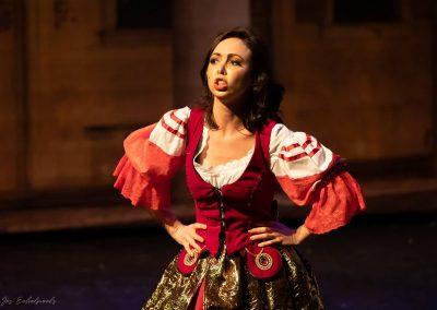 Eine Nacht in Venedig J. Strauss, rol: Ciboletta